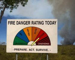 prepare for the bushfire season make a bushfire survival plan